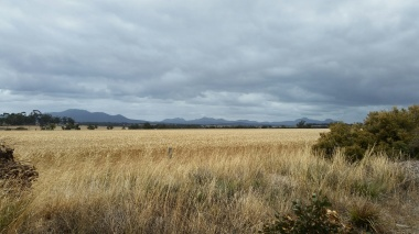 on the road to stirling ranges